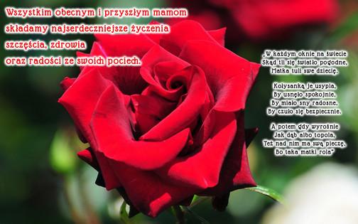 życzenia_dzien_matki.jpeg