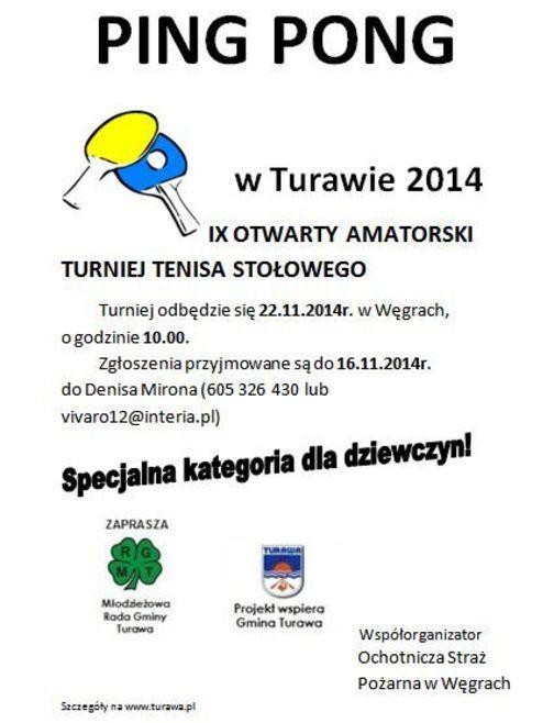 Ping Pong w Turawie 2014, plakat.jpeg