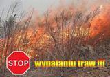 STOP wypalaniu traw.jpeg