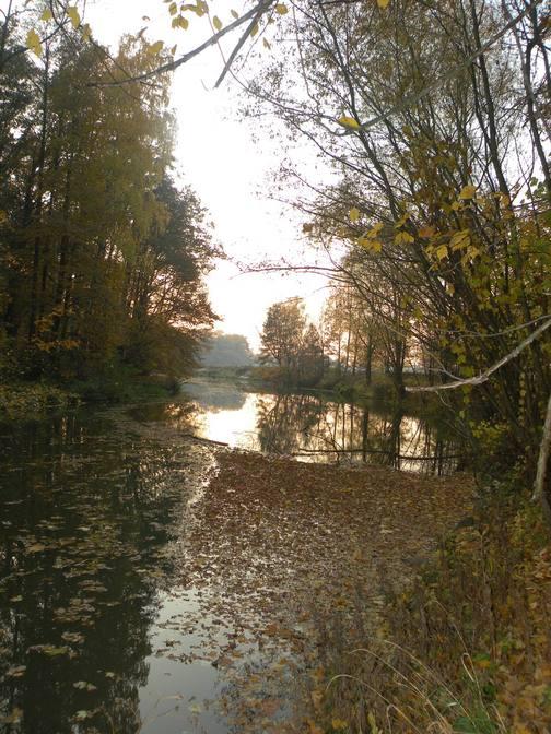 rzeka Mała Panew.jpeg