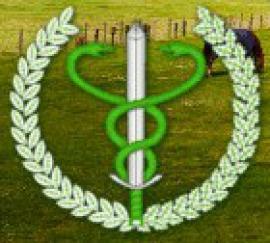 PIW_OPOLE_logo.jpeg