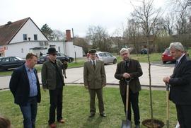 Galeria 100 drzew na 100-lecie
