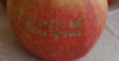 jabłko2.png